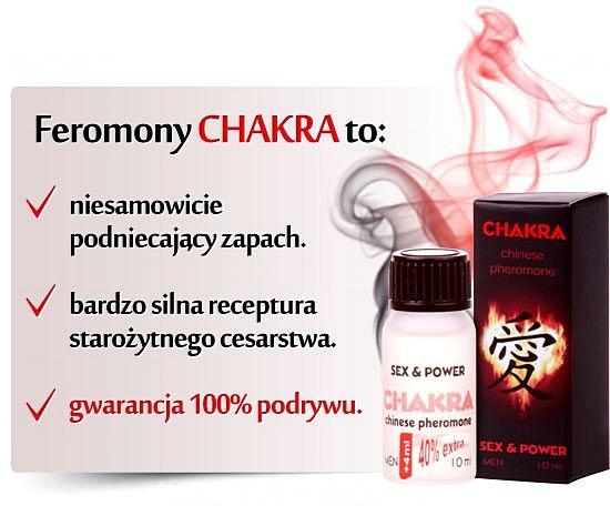 yp-chakra-topbox.jpg